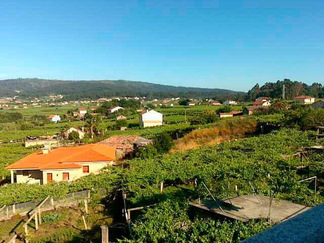 rutas de enoturismo de Galicia